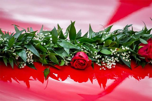 auto roses